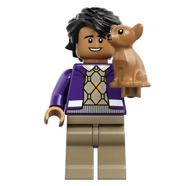 LEGO Ideas The Big Bang Theory (21302) Raj