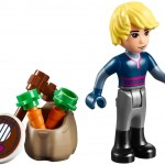 LEGO Disney Princess Frozen 41066 - Anna & Kristoff's Sleigh Adventure 6