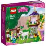 LEGO Disney Princess Rapunzel's Best Day Ever (41065) box