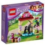 LEGO Friends Foal Washing Station (41123) box