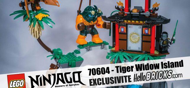 70604 - NINJAGO - Tiger Widow Island