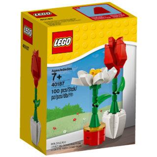 LEGO 40187 Flowers