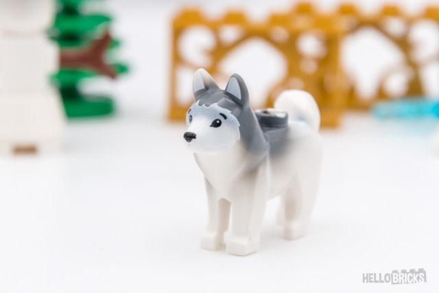 REVIEW LEGO XTRA 40368 Husky