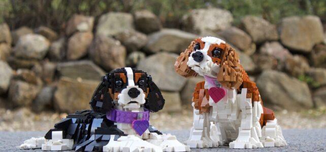 LEGO Cavalier King Charles Spaniels