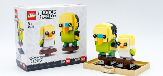 REVIEW LEGO 40443 Budgie