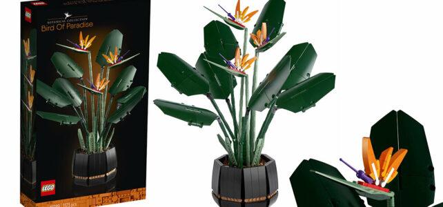 Nouveauté LEGO Botanical Collection 10289 Bird of Paradise